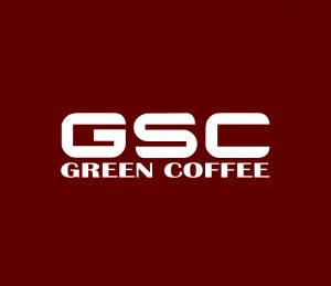 GSC International